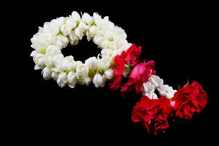 Beautiful Jasmine  garland of flowers photo