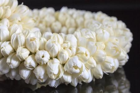Beautiful Jasmine  garland of flowers