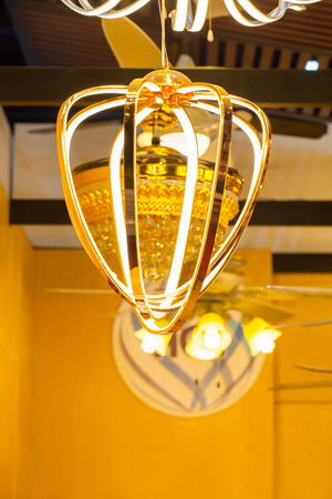 electric fixture: Modern decoration ceiling lighting Lamp