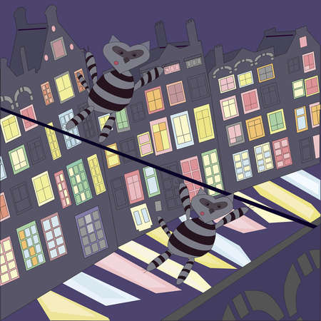 raccoons dressed as a burglar moving along the rope above the night city Stock Vector - 17810692