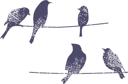 Birds on the branch. Vector illustration. Vector