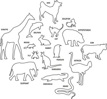 Animal set. Vector illustration.