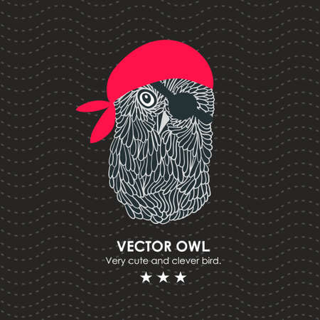 approximately: Cute little pirate owl. Vector illustration isolated.