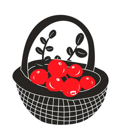 whortleberry: Basket with red berries from the northern forest. Vector illustration.