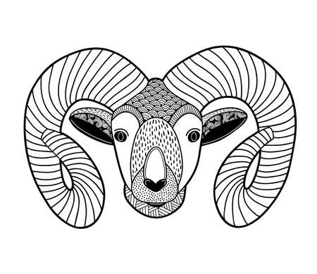 doodled: Head of mountain ram for coloring. Vector doodled illustration.