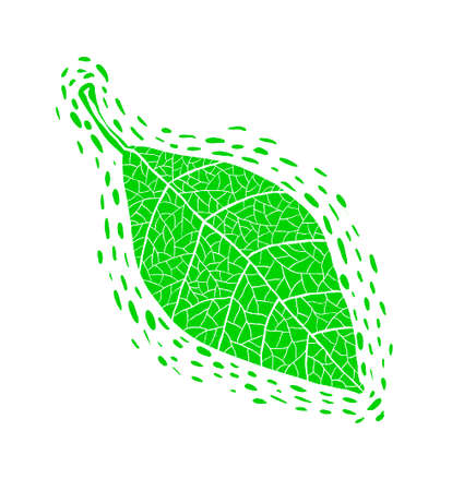 Hand drawn green leaf illustration. Illustration