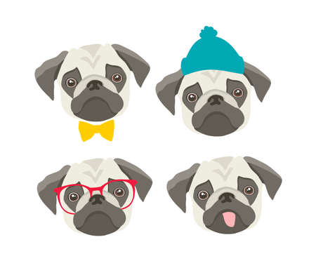 Set of pugs faces with accessories. 向量圖像