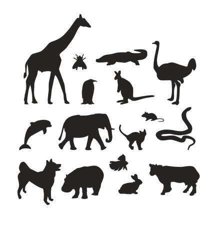 Black and white collection of pets and wild animals.