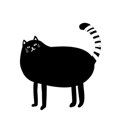 Black and white portrait of fat cat. Cute domestic animal alone on the white background.