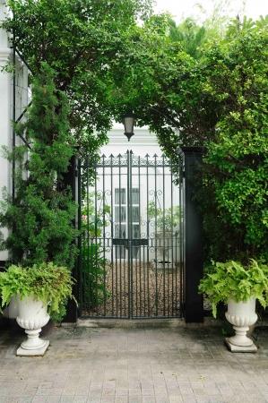 Plants door facade with white flowerpots