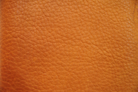 Close up original texture leather skin, photo