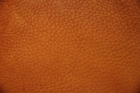 Close up original texture leather skin, photo