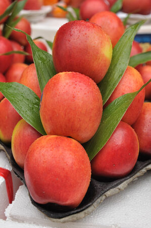 Set of apples fruit preparing for sale on local markets, Thailand photo