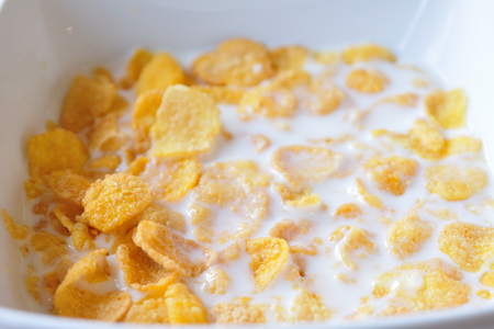 Close up Cereals with fresh milks in bowl  photo