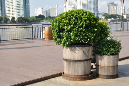 Wooden plant-pots put on floors beside river  photo