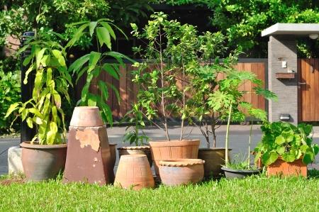 Allerlei planten-potten in de tuin Stockfoto
