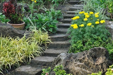 Stairways into flowers garden, public park  Stock Photo