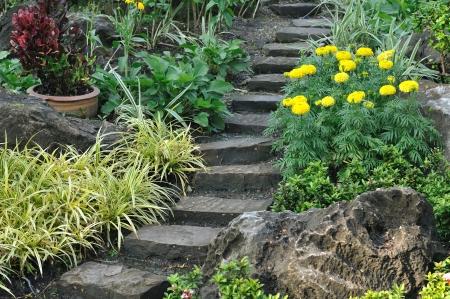 Stairways into flowers garden, public park  Standard-Bild