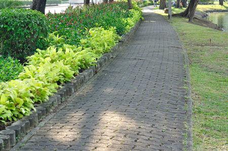 sidewalks: Bend walkway in beautiful garden
