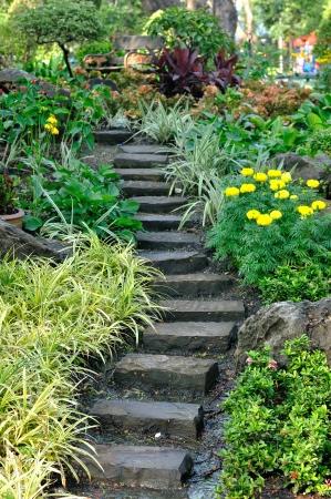 public park: Escaleras en flores de jard�n, parque p�blico Foto de archivo