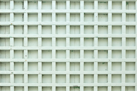 Light green square blocks texture  photo