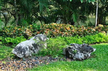 Beautiful landscaped yard and garden photo