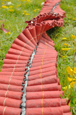 Long Chinese firecrackers on green grass. photo