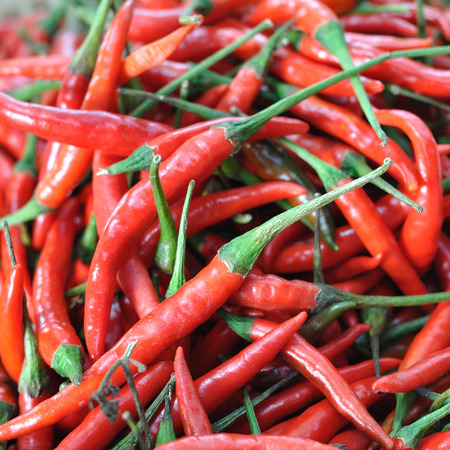 Many red chillis in market, pattern. photo
