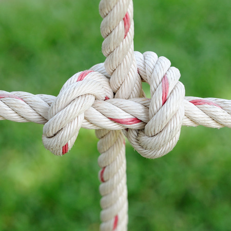 climbing cable: Rope hitching on public garden.