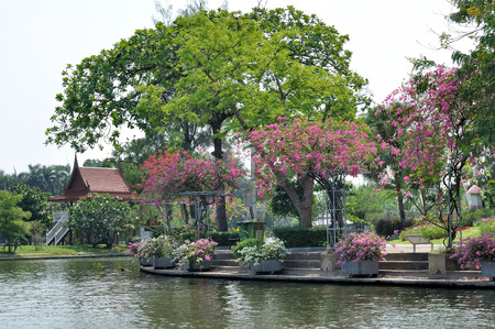 waterside: Waterside with tree and waterfront pavilion Stock Photo