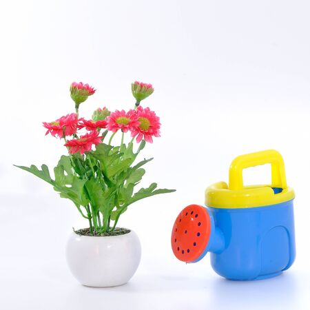 watering pot: Watering pot with flower and pot, conception
