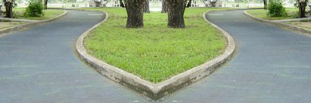 crossway: Walkway and junction design in garden.