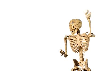 behavior: Skeleton action, human behavior
