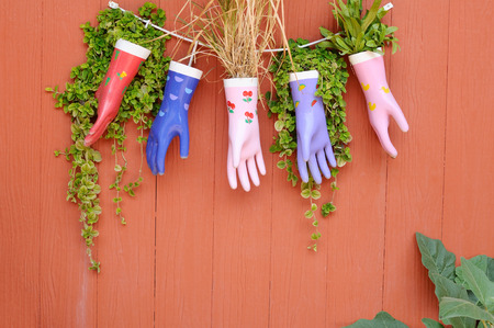 Many color rubber gloves hanging on wall with plants