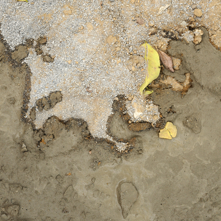 Background texture from fresh cement Stock Photo