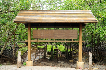 Big outdoor wooden billboard in public nature mangrove trail. Stock Photo