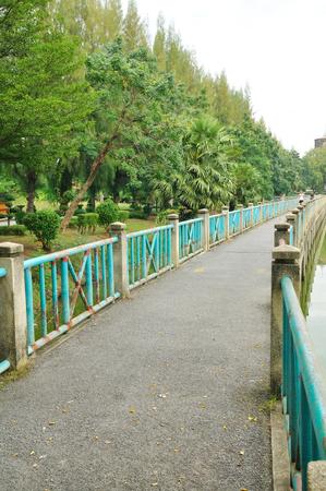 long lake: Long bridge beside lake with pine tree big tree in public park