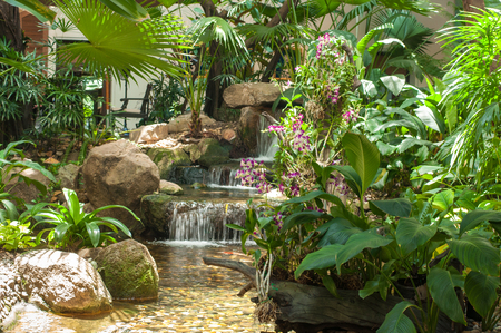 Beautiful small water fall and orchid flowers with green plant, home decoration Stock Photo