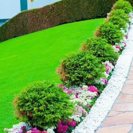 Fresh green yard classic and vintage pathway wth green yard white rocks and flower bush. Reklamní fotografie