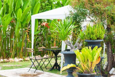 White tent with table and chairs set in garden summer season with green plants, relax and party in park.