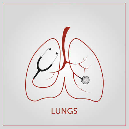 Lungs vectoral illustration. Design of lungs and stethoscope Çizim