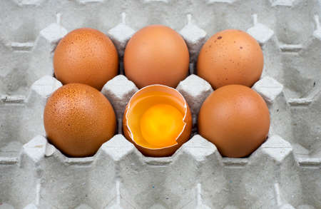 nook: Six eggs in paper tray