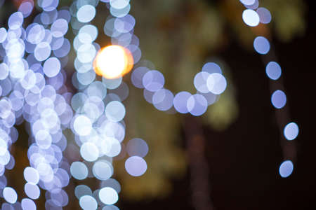 out of focus: Out focus and blur of light under the tree at night time Archivio Fotografico