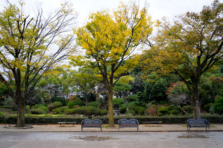 clam gardens: Japanese park and garden in Autumn atmosphere at Kyoto. Stock Photo
