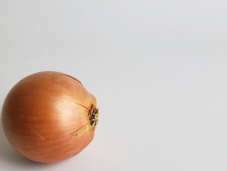 fresh onion vegetable close-up on white background.