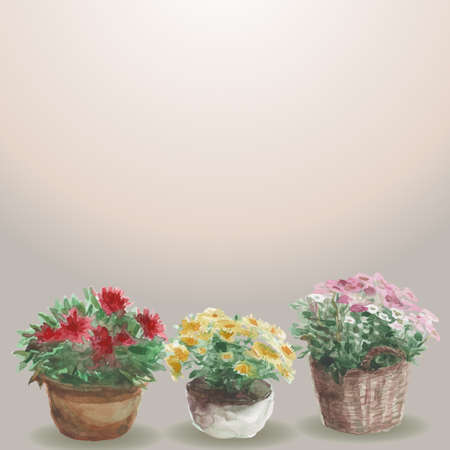 Yellow, pink, red flower in a flower pot,  beige background.  向量圖像