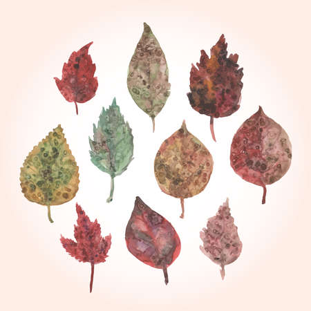 Watercolor set of autumn leaves, paint stains. Vector