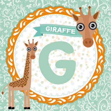 g giraffe: ABC animals G is giraffe. Childrens english alphabet. Vector illustration Illustration