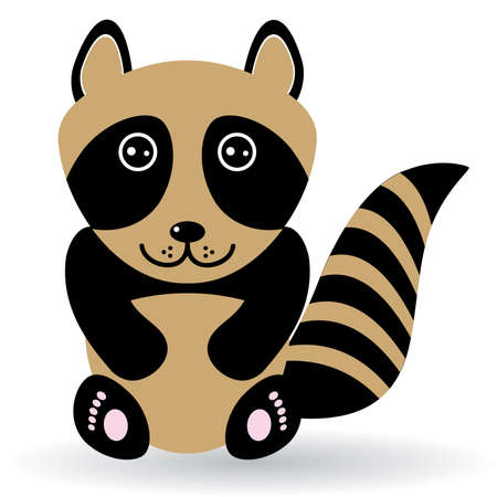 raccoons: Funny raccoon on white background