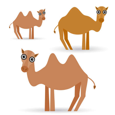 adorable Funny camel on white background. vector Vector